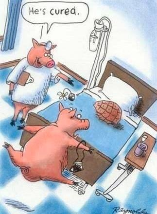 Cured Ham Low Carb Humor