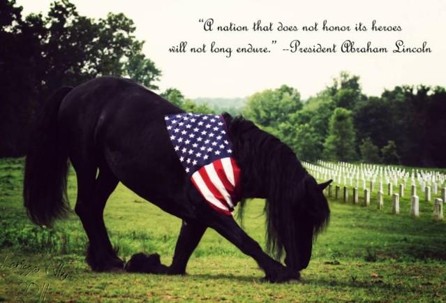 Memorial Day Horse