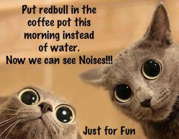 Red Bull in caffeine
