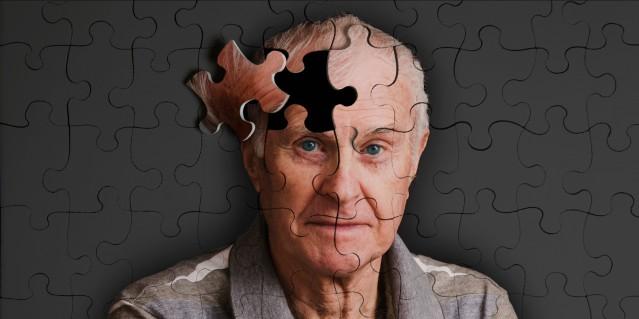 Alzhemiers Puzzle