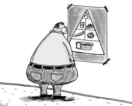 FoodPyramidSimlarity